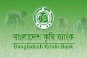 বাংলাদেশ কৃষি ব্যাংক-এ নতুন নিয়োগ বিজ্ঞপ্তি – ২০১৬